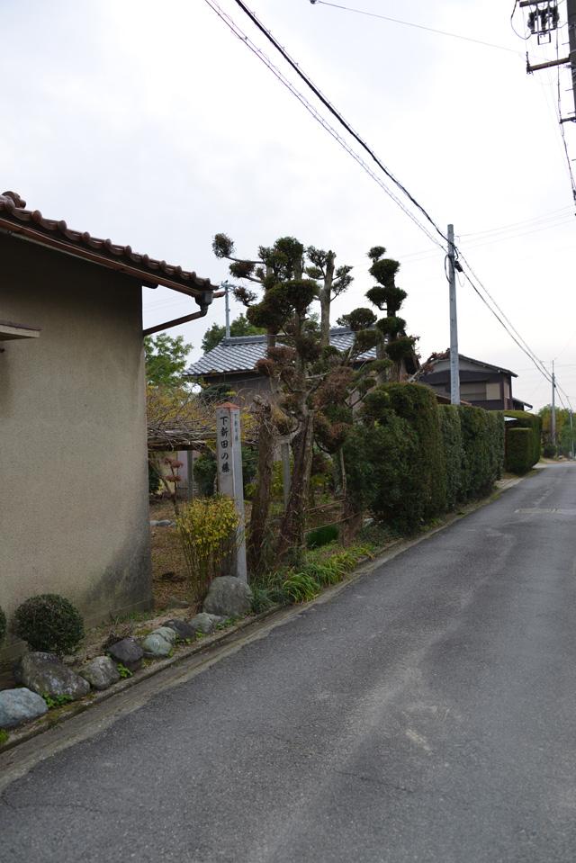 道標 下新田のフジ